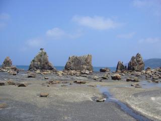 Hashikui120070805