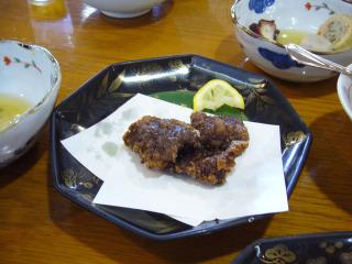 Hakutatsuta20070805
