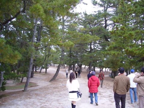Amamatsu120071201