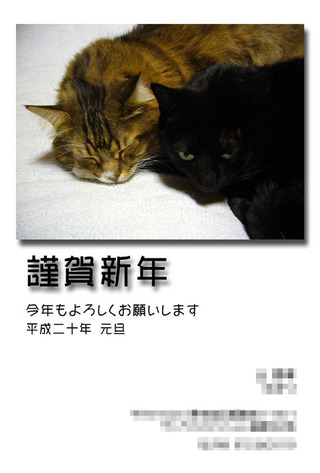 Nengajyo20071228_2