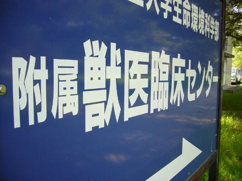 Kanban20080422