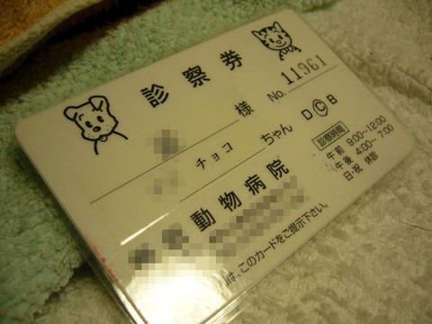 Shinsatsuken20080528