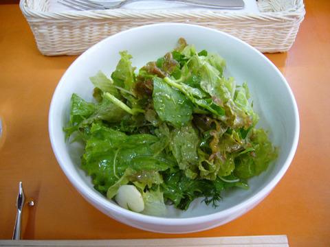 Salad20080927