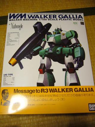 Gallia20081231