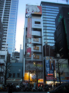 akiba-tora-1
